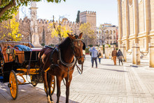 Close-up Of A Horse With A Cart On The Background Of The Alcazar And The Cathedral Of Seville In Andalusia, Spain.