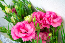 Roses Flowers And Petals Backg...