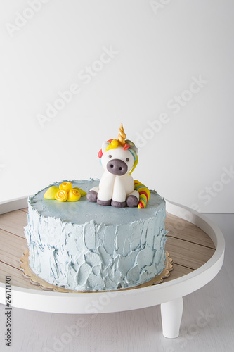 birthday cake for kids. Holiday for the child