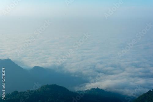 Fototapeta sea of fog on top of the mountain in pompee national park at Kanchanaburi, Thailand obraz na płótnie