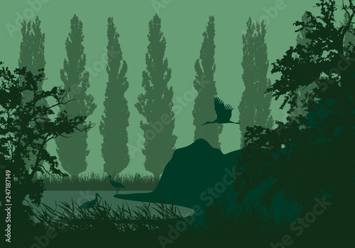 Tuinposter Olijf Realistic illustration of a wetland landscape with a lake or river, reeds and poplars on the shore. Three storks under a green sky, vector