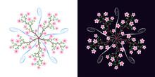 Sakura Blossom, Blooming Cherr...