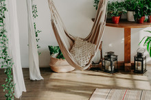 Hammock In The Minimalism Bedroom Interior. Pillows, Plant
