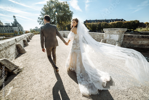 Fotografie, Obraz  Stylish and beautiful bride and groom go holding hands, the bride looks into the