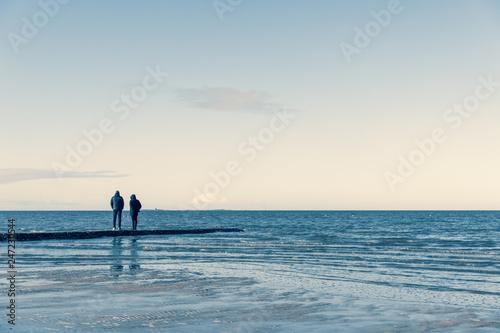 Fotografie, Obraz  wintry beach scene at the north sea