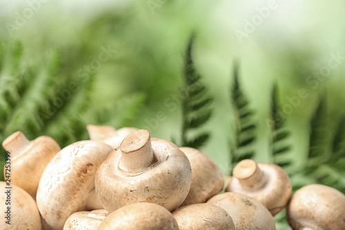 Fresh champignon mushrooms on blurred background, closeup view