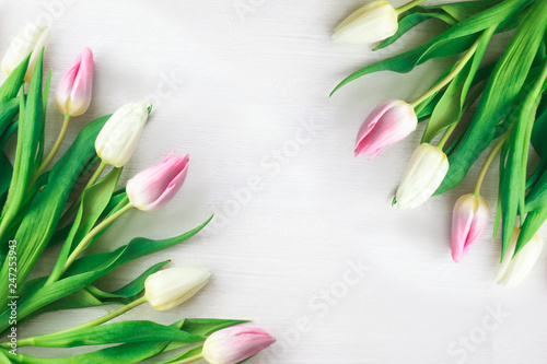 White and purple tulips on a white wooden background. Spring. International Women's Day. Valentine's Day. Selective focus.