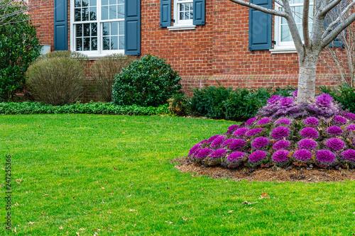 Zdjęcie XXL Kwiaty, kamienie i ładnie przycięta trawa przed domem, podwórko. Wintar w Brooklyn NY US