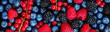 Various Fresh Summer Berries B...