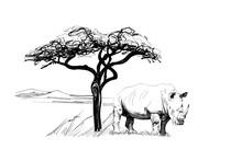 Rhino Near A Tree In Africa. Hand Drawn Illustration