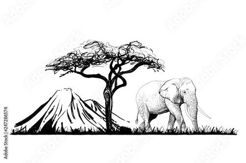 slon-blisko-drzewa-na-gory-tle