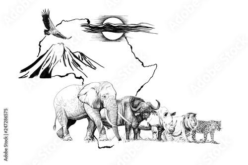 wielkie-afrykanskie-piec-zwierzat-w-afryce