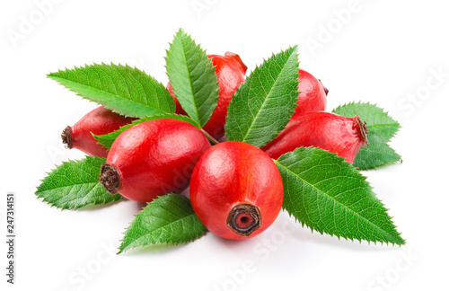 Poster Roses Rosehip. Berries with leaves isolated on a white background.