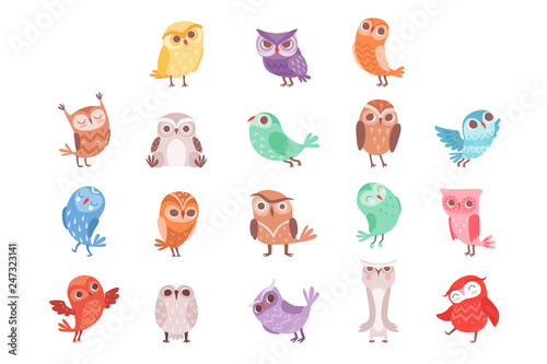 Cute cartoon colorful owls set, lovely owlets vector Illustrations Tablou Canvas