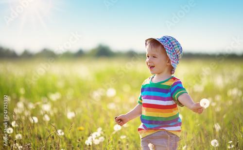 Cuadros en Lienzo Baby boy standing in grass on the fieald with dandelions