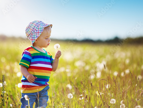 Pinturas sobre lienzo  Baby boy standing in grass on the fieald with dandelions