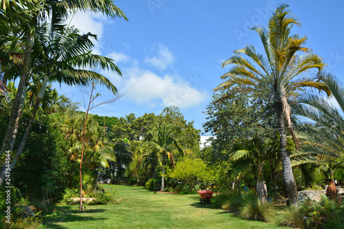 Papiers peints Jardin Tropical garden in Miami Beach.