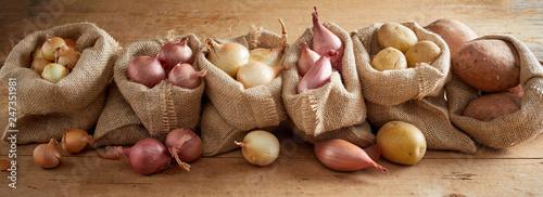 Fototapeta Row of sacks with onion and potatoes obraz