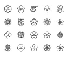 Flowers Flat Line Icons. Beaut...