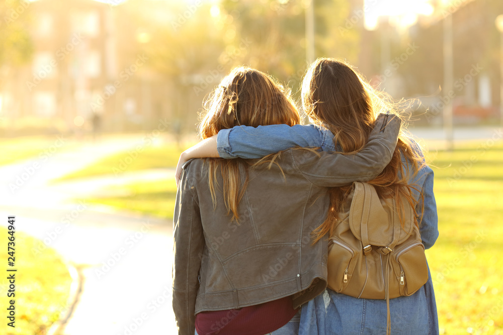 Fototapety, obrazy: Affectionate friends walking at sunset in a park