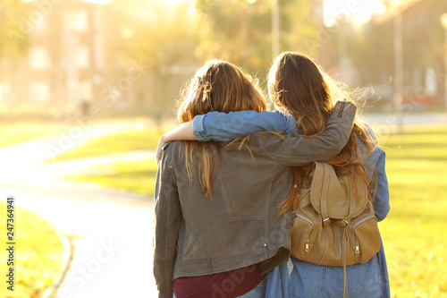 Fotomural  Affectionate friends walking at sunset in a park