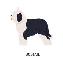 Bobtail Or Old English Sheepdog
