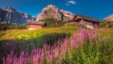 Fototapeta Kwiaty - rower górski, kask rowerowyWłochy, Italia, Sella Ronda, łąka, kwiaty, góry, krajobraz widoki, podróże, ścieżka rowerowa, most, las