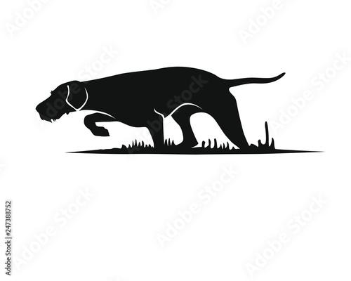 Vorstehund - Ungarisch Drahthaar - Silhouette Canvas Print
