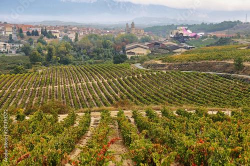 In de dag Toscane ountryside town of elciego and autumn vineyards in la rioja, Spain