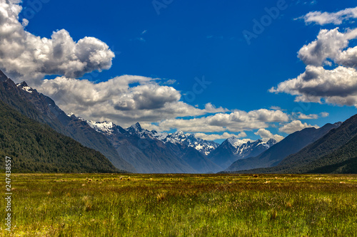 Foto op Plexiglas Oceanië New Zealand, South Island. Fiordland National Park. The Eglinton Valley and the Earl Mountains