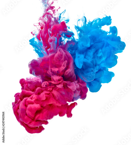 Garden Poster Smoke paint in water color liquid blue red