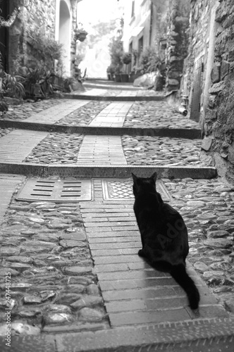 Valokuva  Dolceacqua old city centre, with black cat. Black and white photo