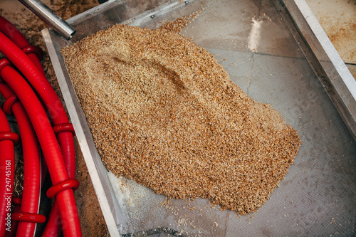 Fotografie, Obraz  Spent malt is poured into a pan from a tank in a private brewery.