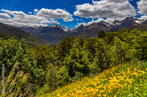 Staande foto Oceanië New Zealand, South Island. Fiordland National Park. Panoramic view of Ailsa Mountains