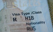 Fragment Of H1B Visa (for Spec...