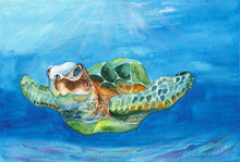 Sea Turtle Watercolor. Watercolor Seascape. For Postcards, Posters, Posters, Summer Design.