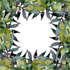 NaklejkaGreen leaf. Exotic tropical hawaiian summer. Watercolor background illustration set. Frame border ornament square.