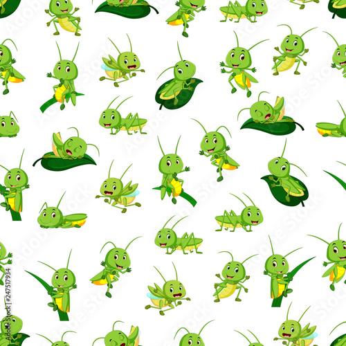 Obraz na plátne Seamless pattern with grasshopper cartoon