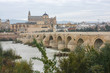 Roman bridge over the Guadalquivir and Mesquite in Cordoba.