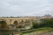 Roman bridge over the Guadalquivir and Mesquite in Cordoba.