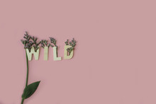 """""""WILD"""" Wooden Letters , Decorated With Purple Statice Flowers On A Pink Background."""
