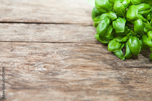 Photo  basilic sur fond de bois