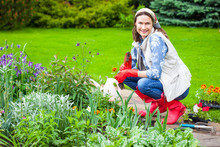 Smiling Middle-aged Woman Working On A Flower Bed