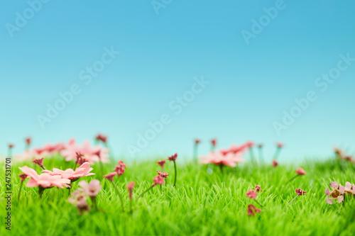 Staande foto Lente Landschaft mit Blumen im Frühling vor Himmel