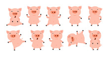 Collection Of Little Piggy.