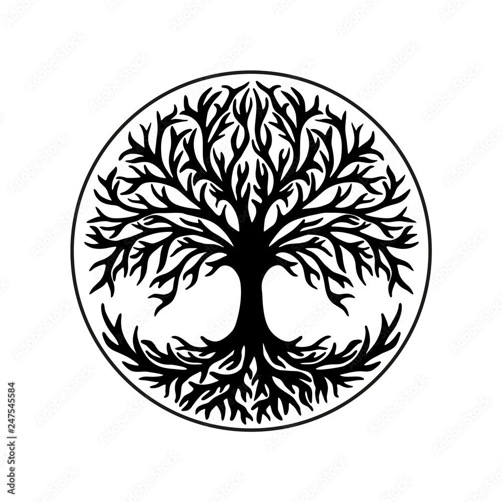 Fototapeta Tree of life, celtic symbol