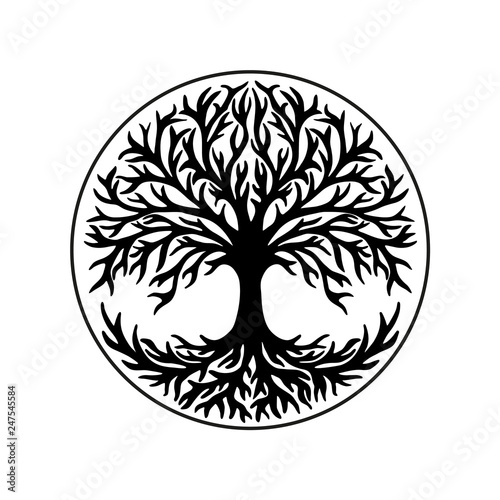 Fotografía Tree of life, celtic symbol