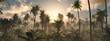 Leinwandbild Motiv Morning in the jungle, Jungle in the fog, Panorama of the rainforest, palm trees in the fog, jungle in the haze,