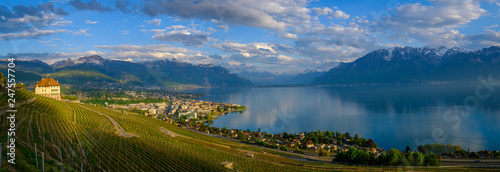 Poster Bleu nuit Top view to vineyards near Vevey at Geneva lake