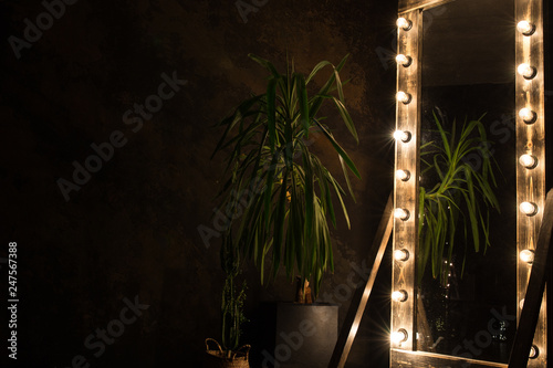 Fotografie, Obraz  Toilet mirror stands on a wooden floor with light bulbs for lighting